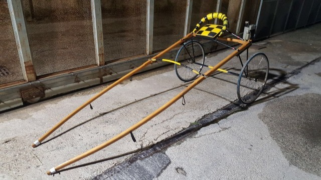 Siracusa: fermata corsa clandestina di cavalli, arrestati due
